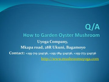 How can I garden Mushroom - Uyoga Tanzanian Mushrooms