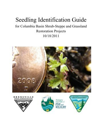 Seedling Identification Guide - Douglas County