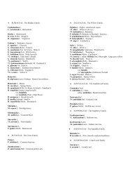 Dicot Families Rubiaceae through Vitaceae - Herbarium