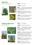 Frink Centre Tree Guide - Quinte Conservation - Page 3