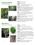 Frink Centre Tree Guide - Quinte Conservation - Page 4