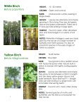 Frink Centre Tree Guide - Quinte Conservation - Page 5