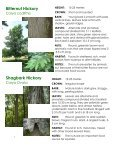 Frink Centre Tree Guide - Quinte Conservation - Page 7