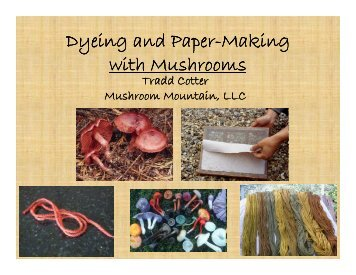 Dyeing and Paper Dyeing and Paper-Making with Mushrooms