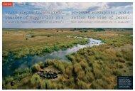 Green Travel - Audobon Magazine - July/August 2012 - Botswana ...