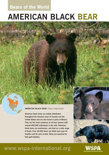 WSPA Bear Pack bear sheets 11-04-06 - World Society for the ...