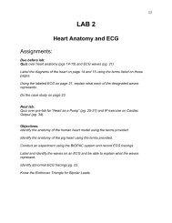 LAB 2 Heart Anatomy and ECG