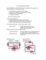THE CIRCULATORY SYSTEM The TRANSPORT or CIRCULATORY ...