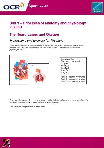 LEVEL 3 BTEC - UNIT 1 Anatomy and Physiology in Sport