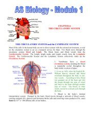THE CIRCULATORY SYSTEM - BiologyMad A-Level Biology