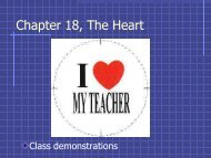 Chapter 18, The Heart - ECC-BOOK - Extracorporeal Circulation and ...