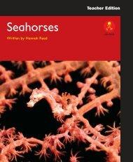 L14 TEpp Seahorses - Alpha Literacy