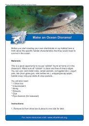 Make an Ocean Diorama! - The Shark Trust