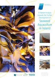 Seaweed Aquaculture in Ireland - Bord Iascaigh Mhara
