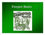 Pawpaw Basics - Ohio Pawpaw Growers Association