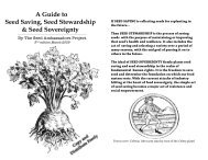 Seed Saving Zine 3 hand out - The Seed Ambassadors Project