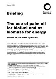 The use of palm oil for biofuel and - Friends of the Earth
