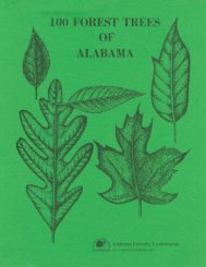 1 00 forest trees - Alabama Forestry Commission