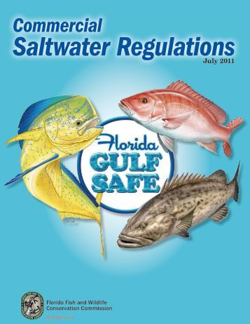 Commercial fishing regulations for gulf of mexico federal for Florida commercial fishing license