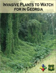 Invasive Plants to Watch for in Georgia - Georgia Invasive Species ...