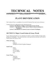 Technical Note 5 - Plant Identification - Plant Materials Program - US ...