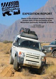 Status of the Arabian leopard - Biosphere Expeditions