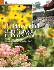 Build Beautiful Rain Gardens to Purify Water - Iowa Department of ...