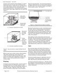 Terrariums - Purdue University - Page 2