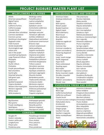 PROJECT BUDBURST MASTER PLANT LIST