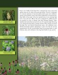 PIZZO NATIVE SEED MIXES - Pizzo & Associates, Ltd. - Page 2