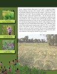 PIZZO NATIVE SEED MIXES - Pizzo & Associates, Ltd. - Page 4