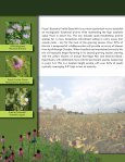 PIZZO NATIVE SEED MIXES - Pizzo & Associates, Ltd. - Page 6