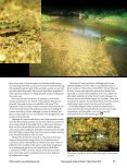 Eastern Sand Darter by Rob Criswell - Pennsylvania Fish and Boat ... - Page 2