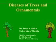 PDF of a General Tree Disease Presentation - University of Florida