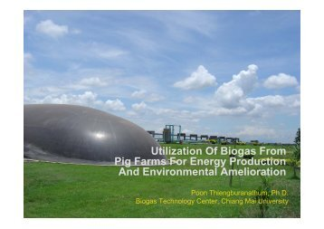 Utilization Of Biogas From Pig Farms For Energy Production ... - SSWM