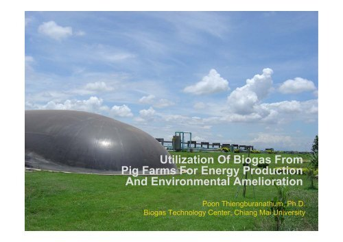 Utilization Of Biogas From Pig Farms For Energy Production     - SSWM