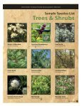 trees & shrubs - Southwest Florida Water Management District - Page 5