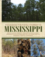 P2470 Managing The Family Forest In Mississippi