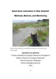 Sand dune restoration in New Zealand: Methods ... - Te Arai Kete