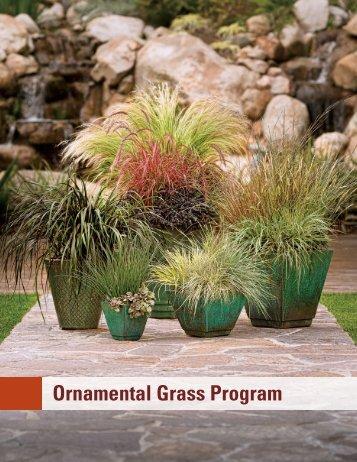 Ornamental Grass Program