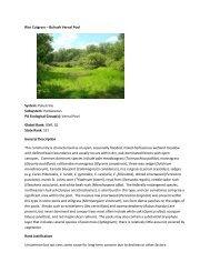 Rice Cutgrass – Bulrush Vernal Pool System - Pennsylvania Natural ...