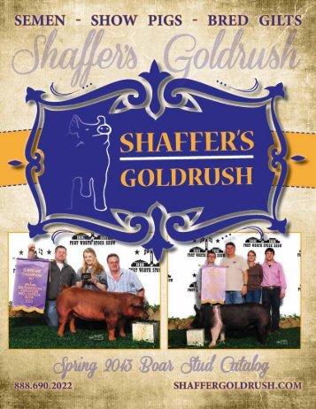 View 2013 Spring Catalog - SSG Gold Rush