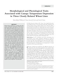 Morphological and Physiological Traits Associated with Canopy ...