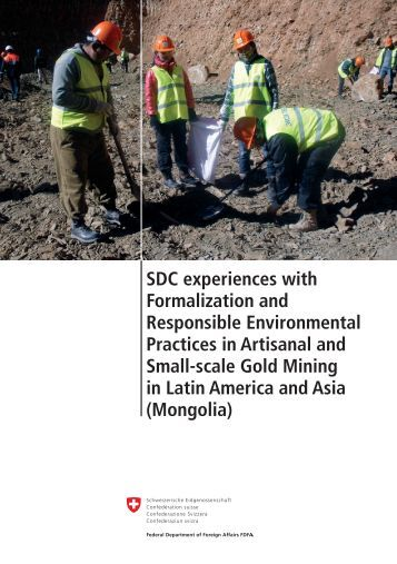 SDC experiences with Formalization and Environmental Practices in
