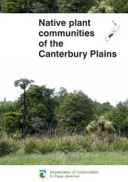 Canterbury Plains - Ashburton District Council