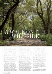 A WALK ON THE WILD SIDE - PageSuite