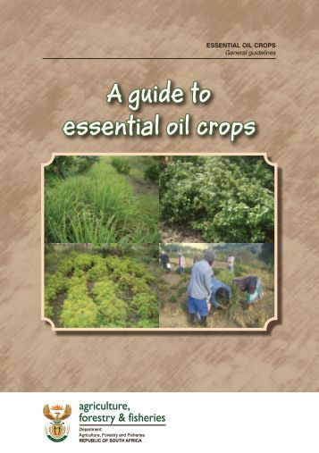 A guide to essential oil crops - Department of Agriculture, Forestry ...