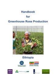 Handbook for Greenhouse Rose Production Ethiopia - DLV Plant