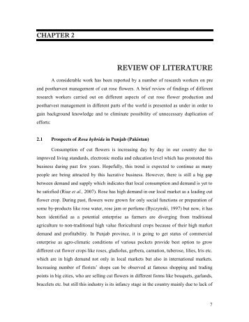 cultural values essay