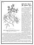Volume 3 in PDF Format - Paul Zimmerman Roses - Page 2